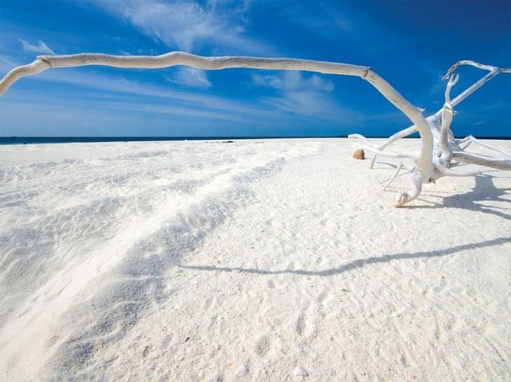 arena blanca en islas malvinas