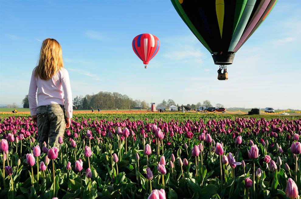 Βόλτες με αερόστατο πάνω από την ξύλινη φεστιβάλ Tulip παπουτσιών - Dreamin '