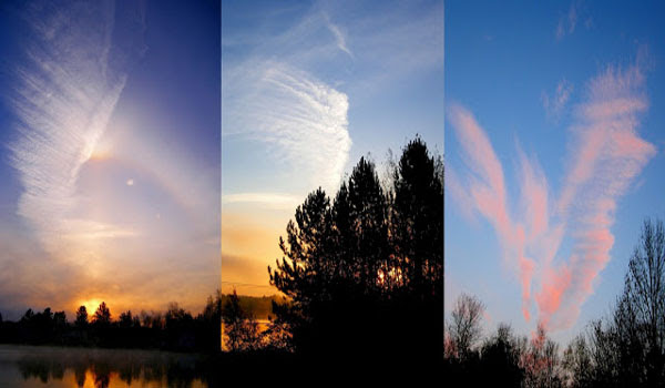 Are Chemtrails & Disease Pandemics linked to Pharmaceutical Companies and their Economic Growth