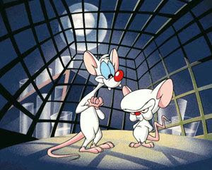 Pinky and the Brain.