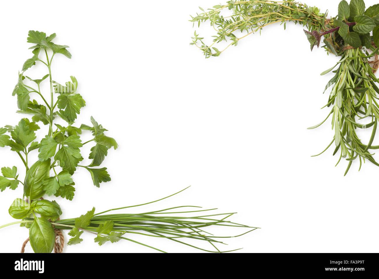 Culinary herbs backg