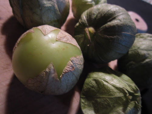 Tomatillos (02)