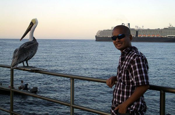 If only this pelican knew how many folks at Avalon Bay posed for pictures with this fella, on October 4, 2013.
