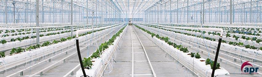 Hydroponic Greenhouses Design Construction Apr