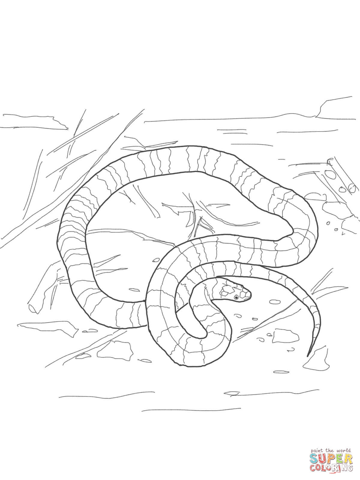 er sur la Serpent corail coloriages pour visualiser la version imprimable ou colorier en ligne patible avec les tablettes iPad et Android