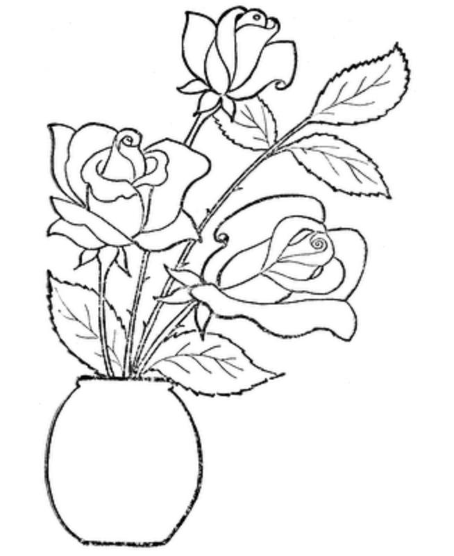 Rose Flower Drawing Images Download