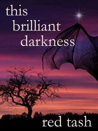 Image result for This Brilliant Darkness