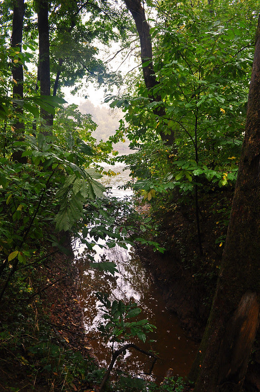 River Woods (4)