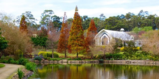 5 Tourist Attractions in New South Wales that You Do Not Want to Miss