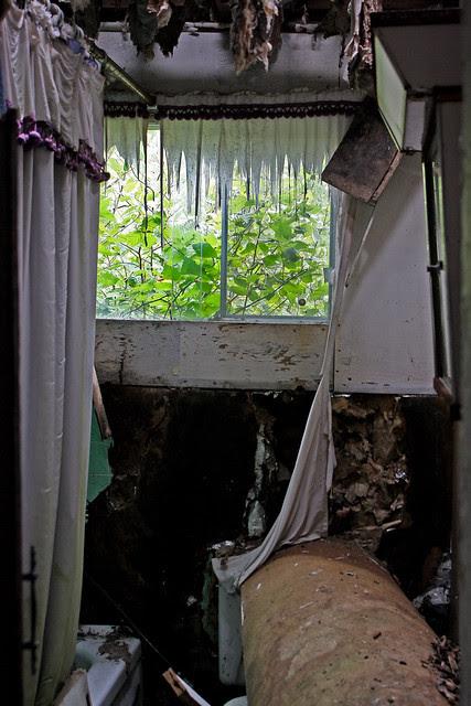 The curtain call
