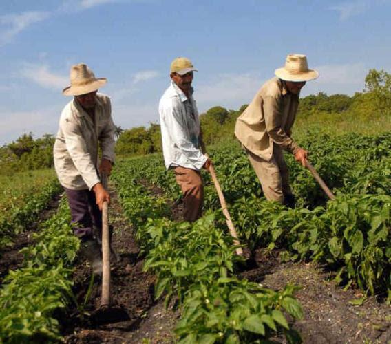 Colectivos sindicales de la provincia de Santiago de Cuba desarrollan, hasta el venidero mes de marzo, las asambleas de presentación e información del Plan de la Economía y el Presupuesto para 2019, ejerciendo como verdaderos dueños de los medios de producción.