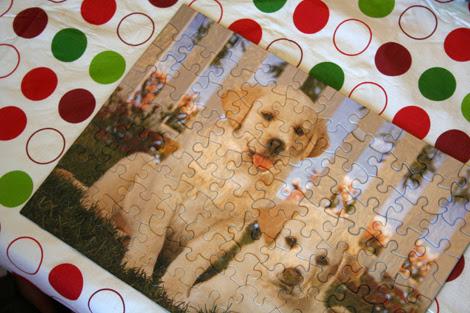 puppy puzzle