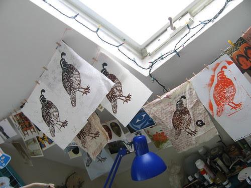 quails drying