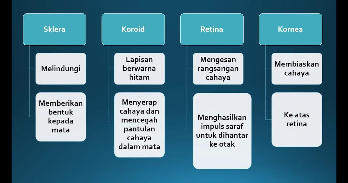 Soalan Sains Tingkatan 1 Dalam Bahasa Melayu Persoalan S