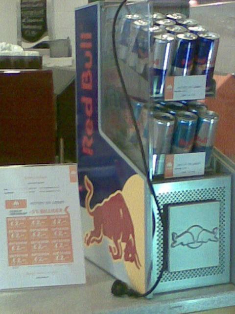 mini red bull kühlschrank