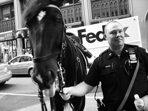 NYPD Horse and Rider