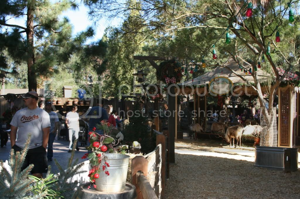 Reindeer Roundup at Big Thunder Ranch