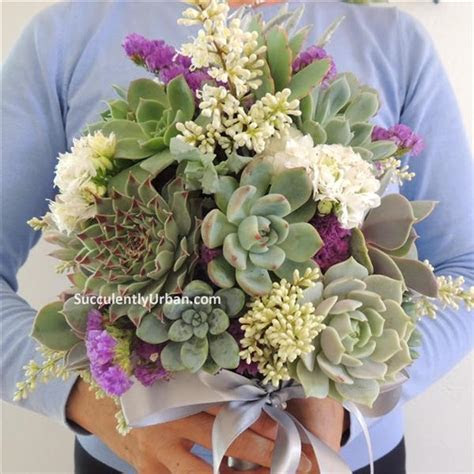 Succulent Bouquet   Gallery