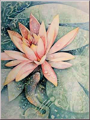 Flower Meaning Water Lily Flowers Healthy