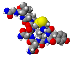 Spacefilling model of oxytocin. Created using ...