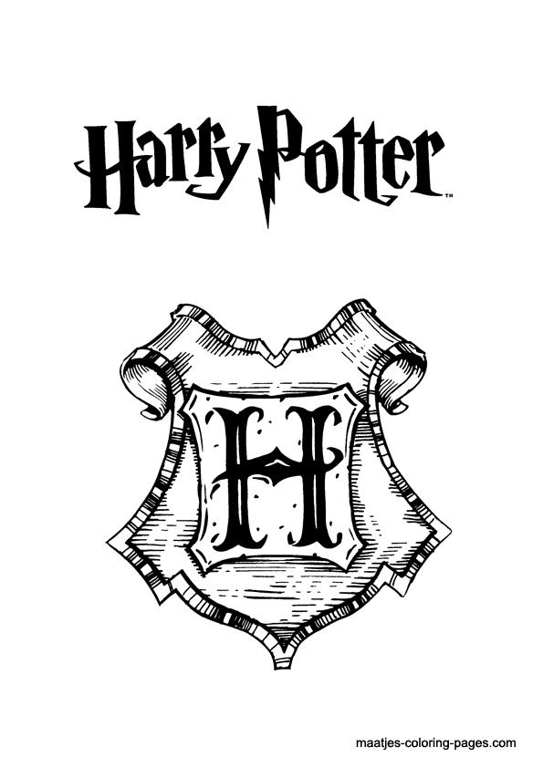 Harry Potter Hedwig Drawing At Getdrawingscom Free For Personal