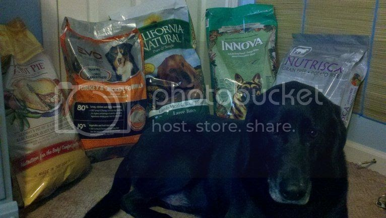 Evo Dog Food For Dogs With Cancer