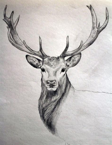 drawing  hunting pinteres