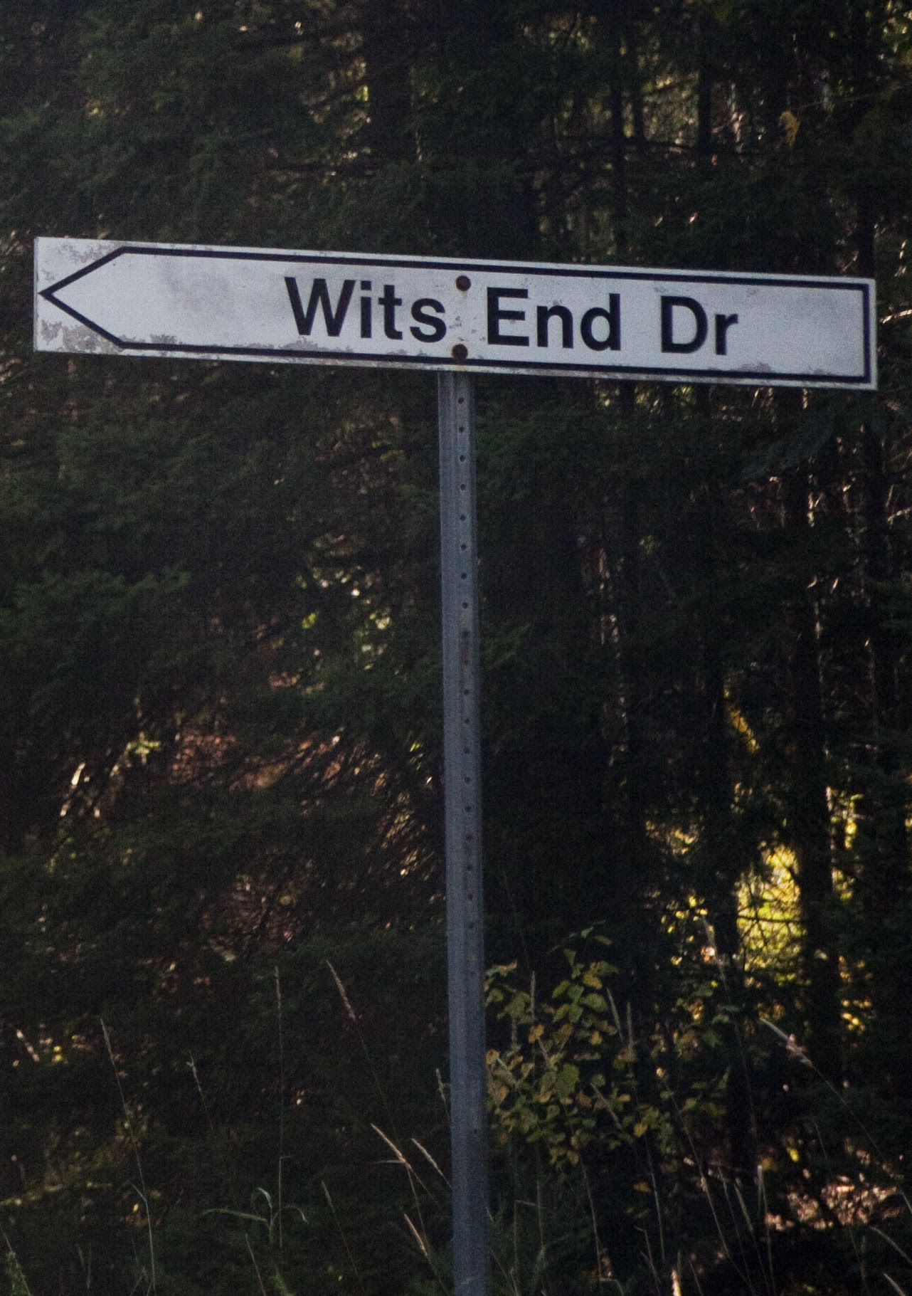 Wits end drive