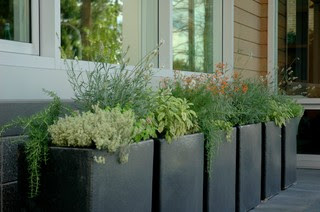 Garden contemporary porch