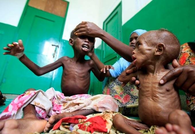 La ONU alerta: Podrían morir de hambre 300.000 personas por día