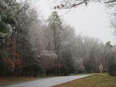 Frosty by Teckelcar