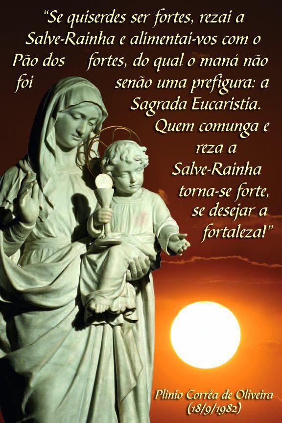 100+ EPIC Best Frases De Santos Sobre Nossa Senhora