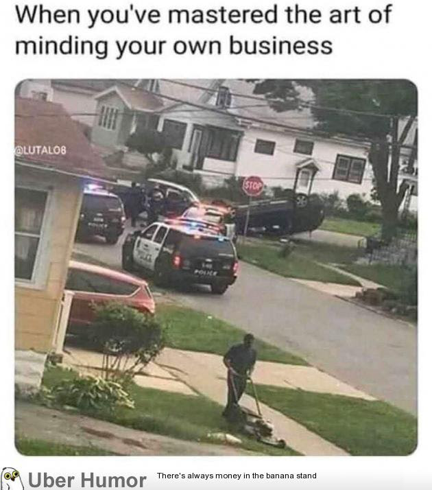 Master Of Mind Your Own Business Funny Pictures Quotes Pics