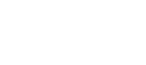 g+search-search-google-plus-content