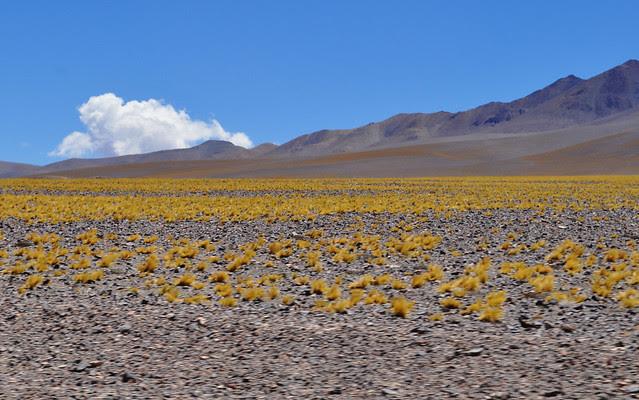 catamarca, argentina, nordovest, montagne