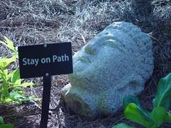buddha path