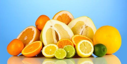 oranges-are-not-the-only-fruit