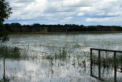 Knuckey's Lagoon