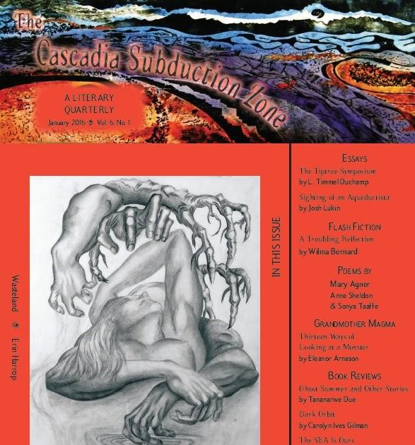 essays on the shawl by cynthia ozick