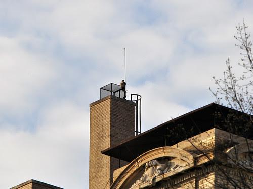 Hawk atop St. Luke's
