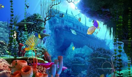 best of sfondo marino animato sfondo