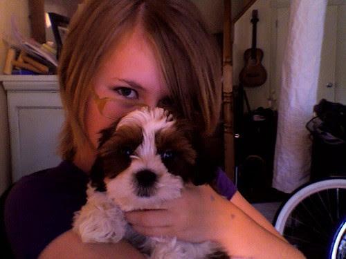 Gratuitous puppy photo