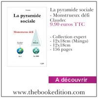 Le livre La pyramide sociale - Monstrueux défi