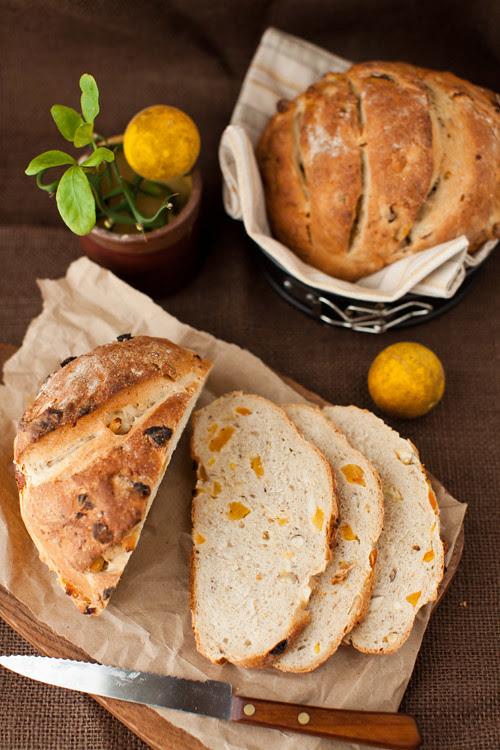 Apricot_nut_bread_2