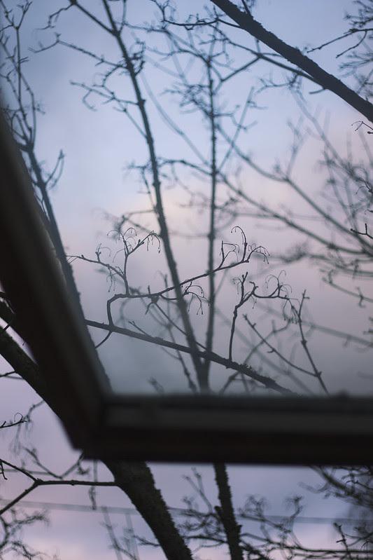 Ikkunasta2