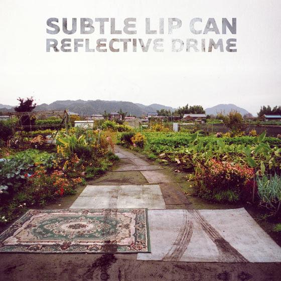 Subtle Lip CanReflective Drime