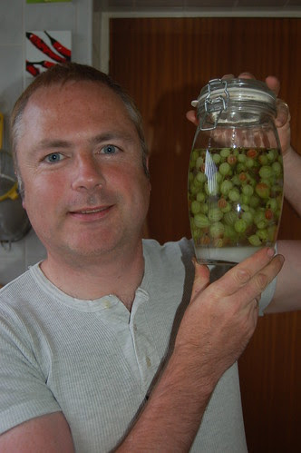 gooseberry vodka June 11