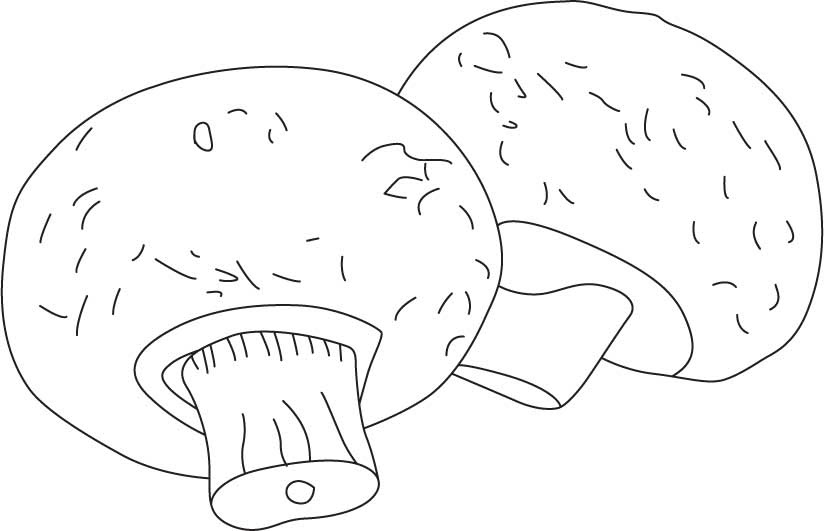 Flower Pot Mushrooms Coloring Page Download Free Flower Pot Mushrooms Coloring Page For Kids Best Coloring Pages