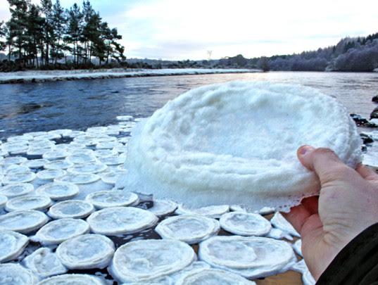Τηγανίτες Πάγου