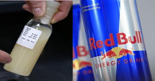 Bebida energética é feita de sêmen de touro, segundo o texto espalhado na web! Será verdade? (foto: Reprodução/Facebook)